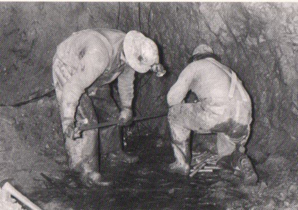 Miners4