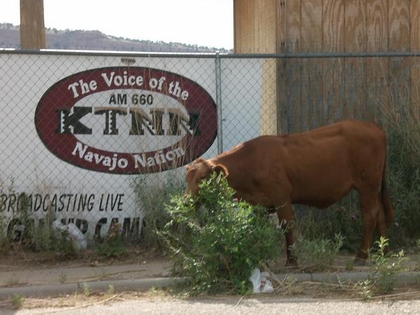 KTNN, Navajo radio, 2006.